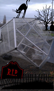 Wind damaged greenhouse
