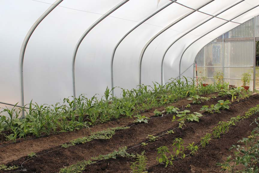 Klamath Tribal Health Community Greenhouse