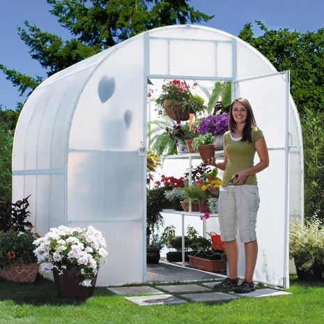 Solexx Greenhouses and Insulated Greenhouse Covering on green lavender, green beets, green bonsai, green bushes, green perennial, green garden design, green flowers, green tulips, green nature, green gardening, green shrubs, green butternut squash,