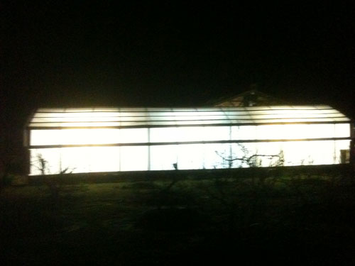 SOlexx Greenhouse at night
